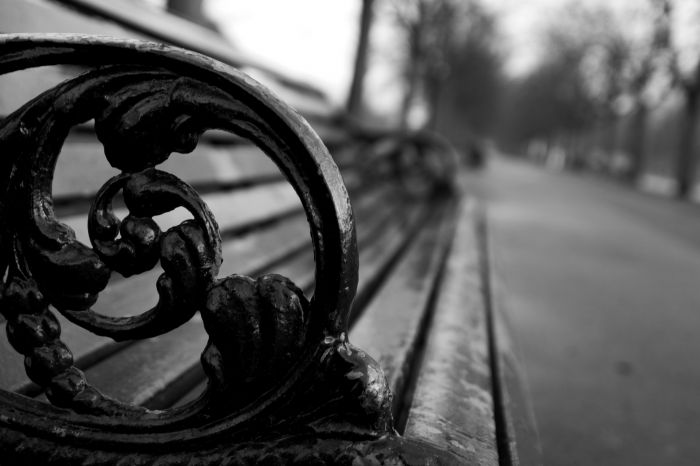 photoblog image Empty Park Bench