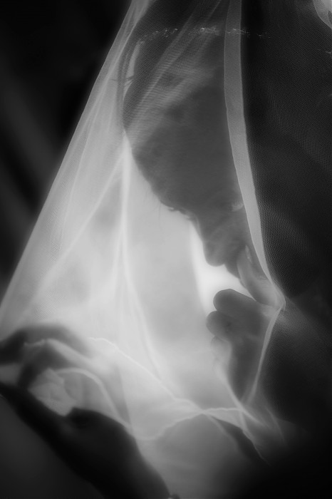 photoblog image B/W wedding moments #3